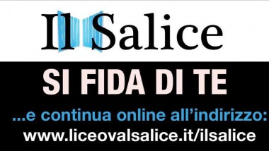 Il Salice: In tune to the stars