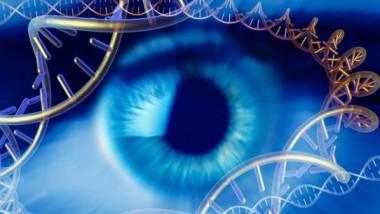 Il DNA non è in vendita