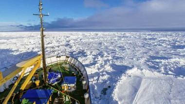 Sos in Antartide