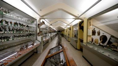 La bellezza di un Museo