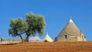 Puglia, terra di ulivi e di spazzatura