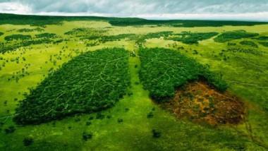Emergenza clima: mai troppo piccoli per fare la differenza