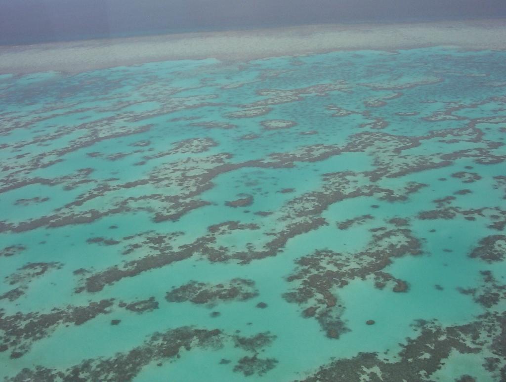 vista della Bariera Corallina